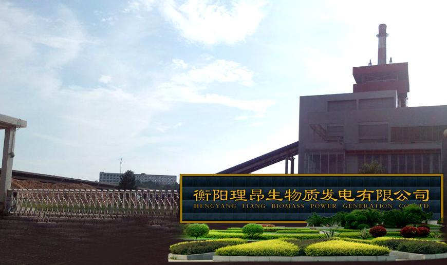 衡阳理昂生物质发电有限公司