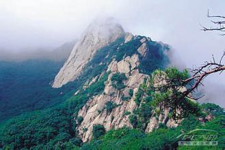 湖南凤凰山茶业有限公司