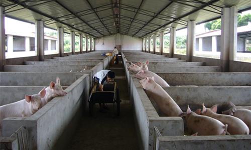 双峰县松桂种养农民专业合作社