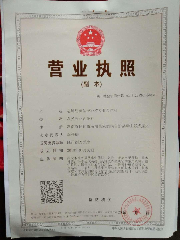 靖州县覆盆子种植专业合作社