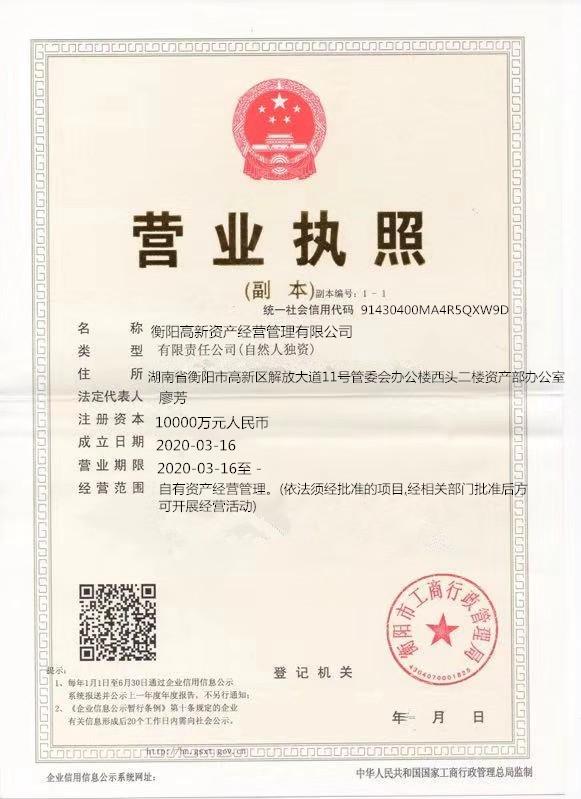 衡阳高新资产经营管理有限公司