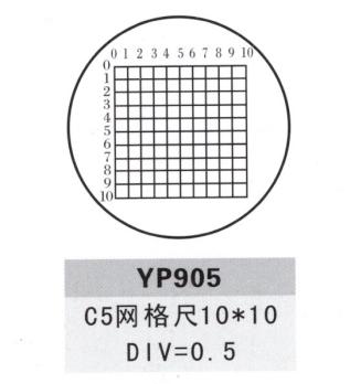YP905测微尺
