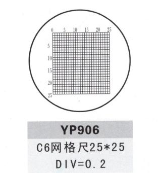 YP906测微尺