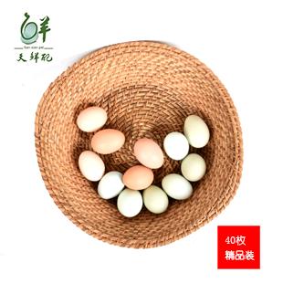天鲜配土鸡蛋(40枚...
