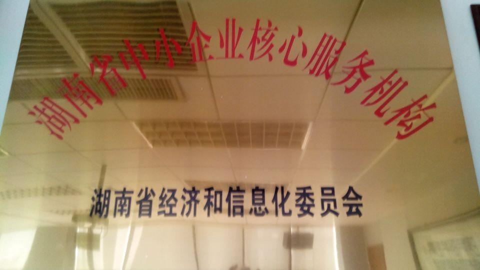 湖南省核心服务机构