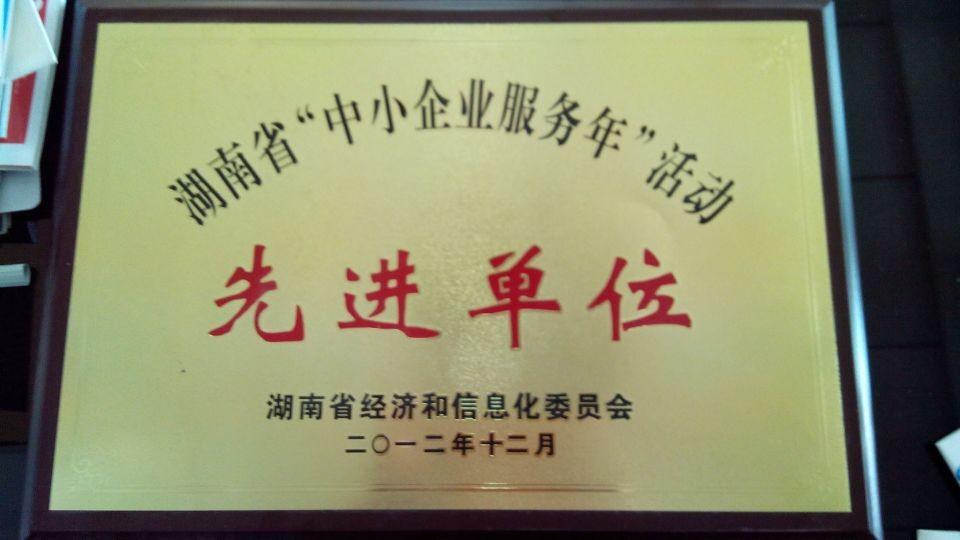 """湖南省""""中小企业服务年""""活动先进单位"""