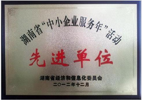 省中小企业服务年先进单位
