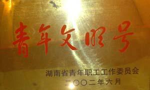 """2002年,湖南省青年职工工作委员会授予""""湖南省青年文明号"""""""