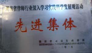 """2010年,湖南省司法厅政治部等授予""""深入学习实践科学发展观先进集体"""""""
