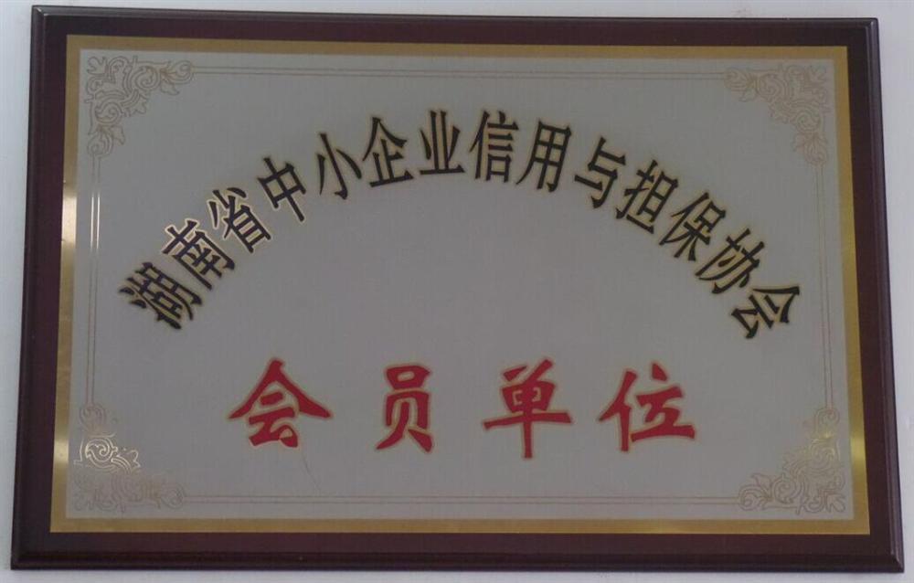 湖南省中小企业信用与担保协会会员单位