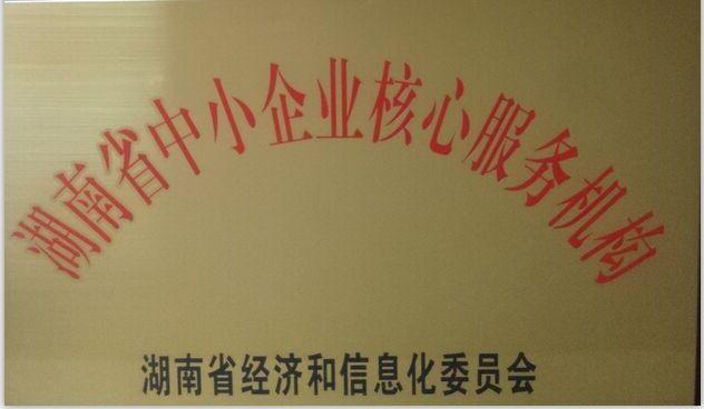 核心服务机构