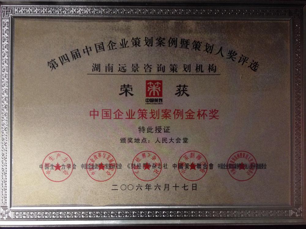 06中国企业策划案例金杯奖