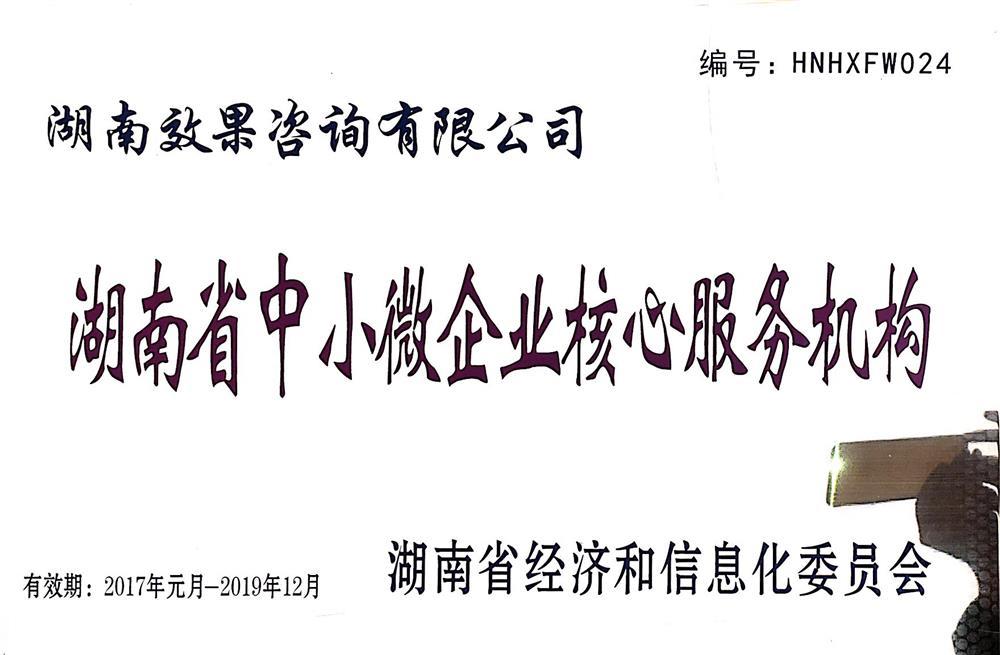 2017-2019湖南省中小微企业核心服务机构