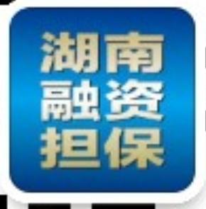 湖南省中小企业信用与担保协会
