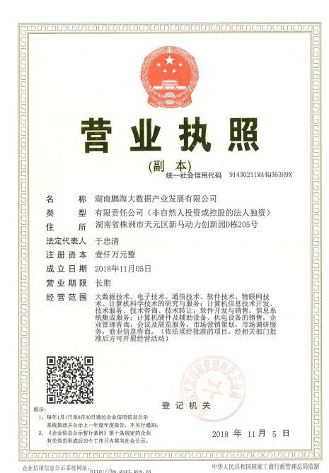 湖南鹏海大数据产业发展有限公司