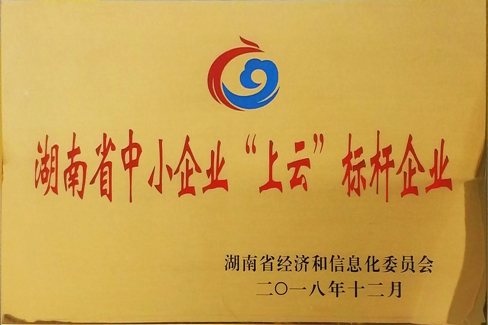 【實物圖】湖南省中小企業上云標桿企業_牌子