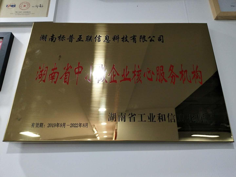 湖南省中小微企业核心服务机构