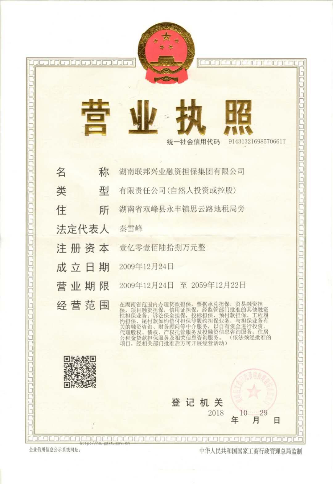 湖南联邦兴业融资担保集团有限公司