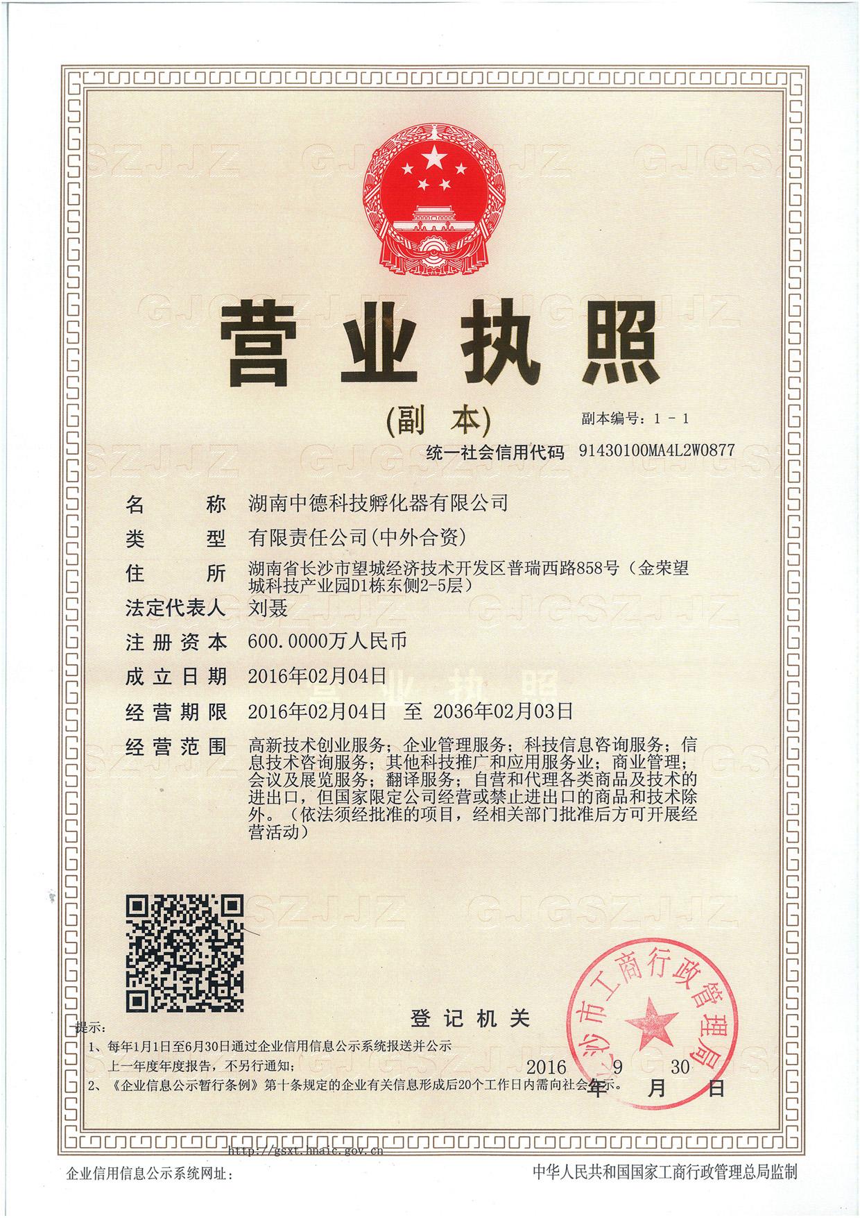 湖南中德科技孵化器有限公司