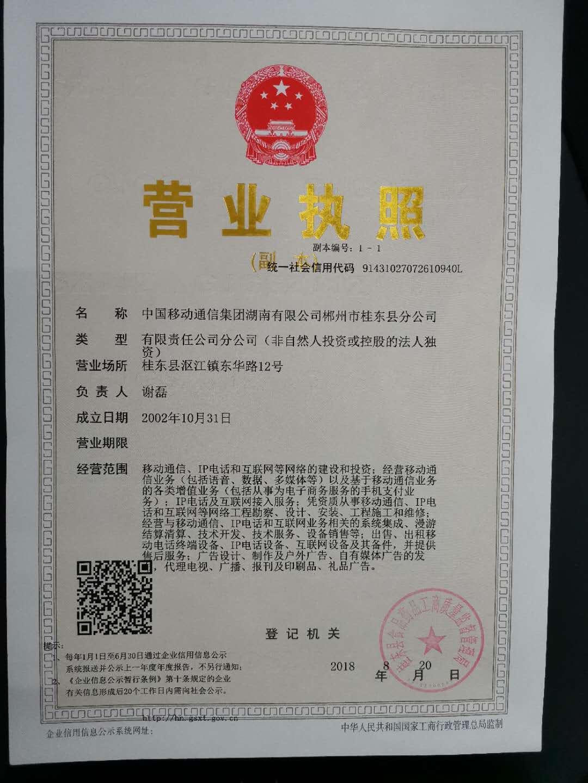 中国移动通信集团湖南有限公司郴州市桂东县分公司
