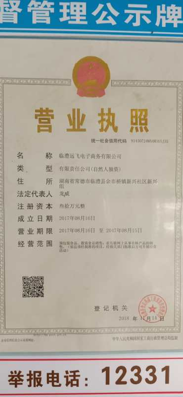 临澧远飞电子商务有限公司