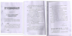 常宁市青阳新区8条道路可行性研究报告