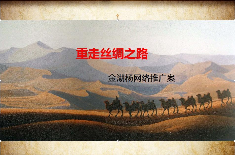 金湖杨年度网络推广项目