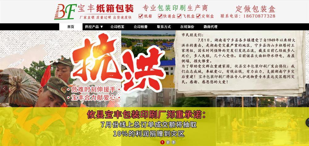 攸县宝丰包装印刷厂全网营销服务案例