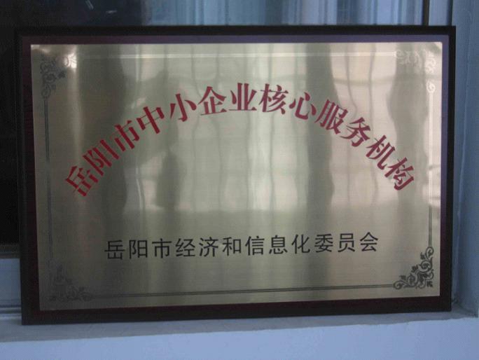 湖南省制造强省成功案例