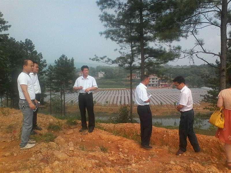 区领导到檀江乡甲一公司现场办公推动项目建设