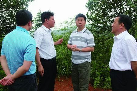 """县委书记王洪斌调研三香园:打造""""中国香都"""""""
