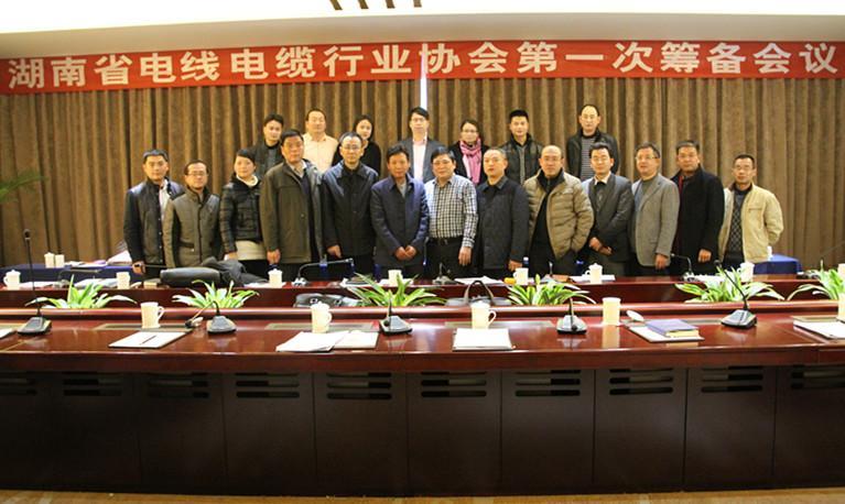 湖南省电线电缆行业协会第一次筹备会议召开