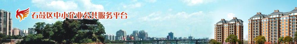 湖南省中小企业公共服务平台分站