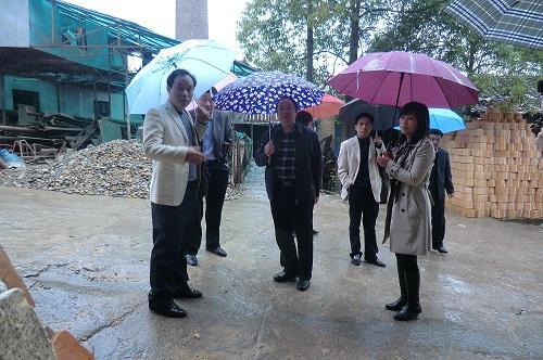 市政协副主席李安平一行来我县调研 工艺美术产业发展情况