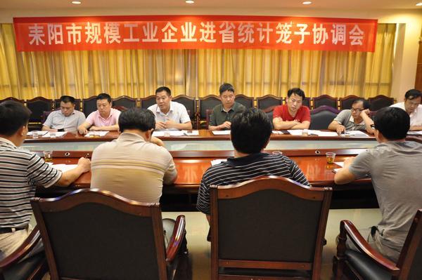 耒阳市召开规模工业企业进省统计笼子协调会