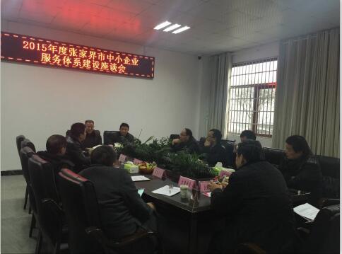 2015年张家界市中小企业服务体系建设座谈会